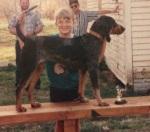 Peanut the bluetick hound.