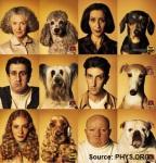 Pet_Owner