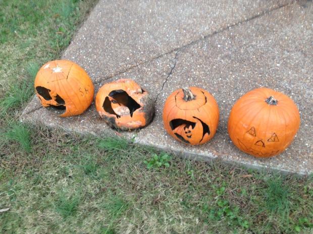 Pumpkins_1
